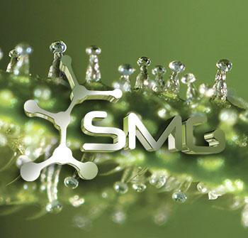 logo greensm